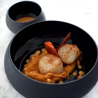 Noix de St-Jacques snackées, mousseline de butternut & chorizo en texture
