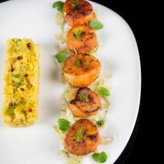 Saint-Jacques tandoori, risotto aux épices de briyani, fenouil croquant aux grandes de coriandre et citron vert