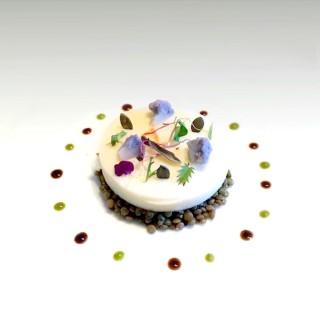 Panna-Cotta de chou fleur et lentilles vertes